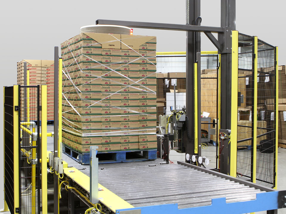 pallet of boxed fruits on conveyor being stretch wrapped by mechanical arm above pallet